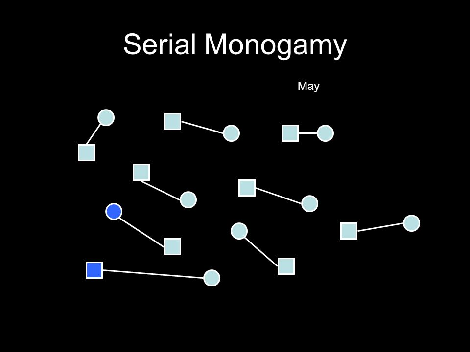 Serial Monogamy May