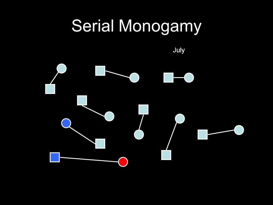 Serial Monogamy July