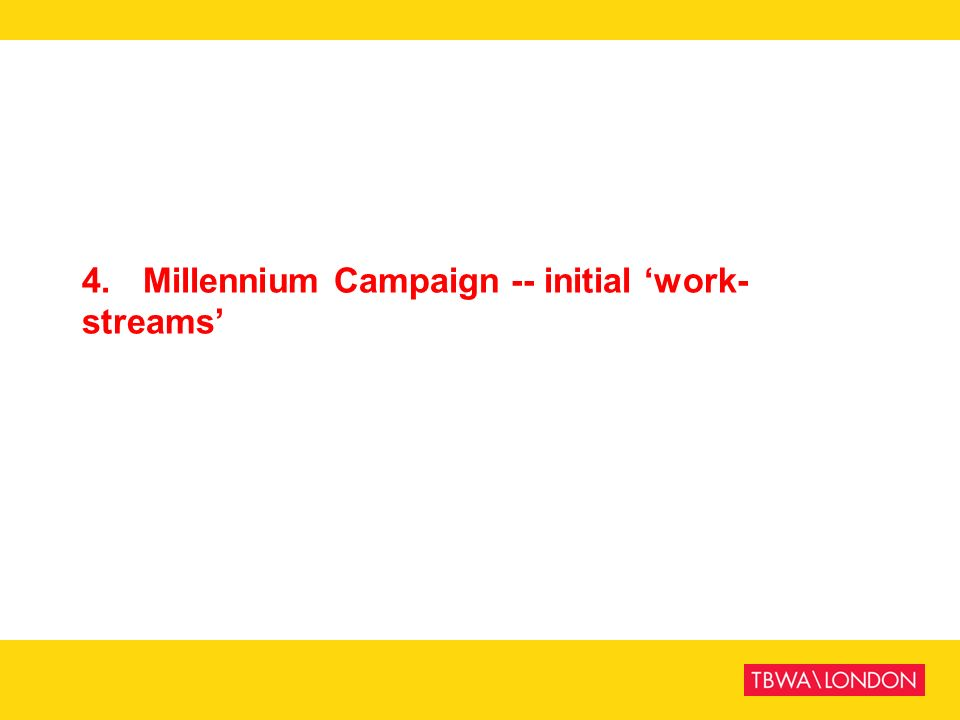 4. Millennium Campaign -- initial work- streams