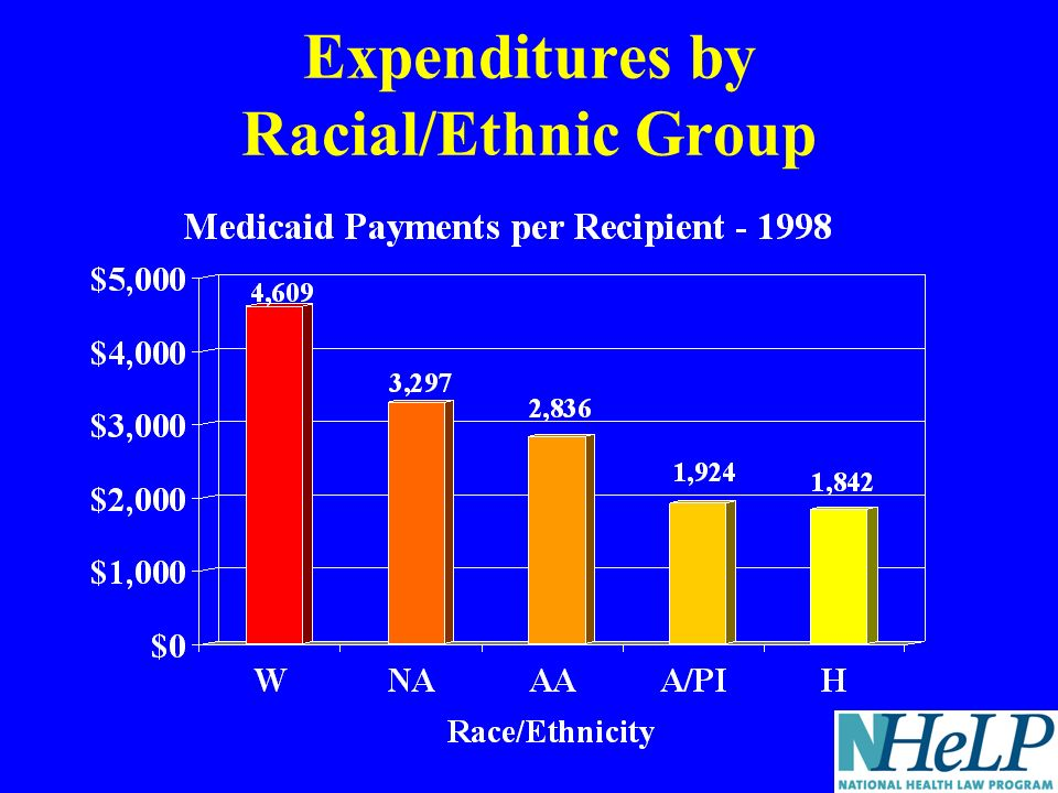 Expenditures by Racial/Ethnic Group