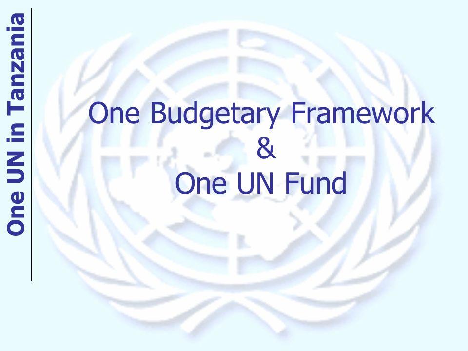 One Budgetary Framework & One UN Fund One UN in Tanzania