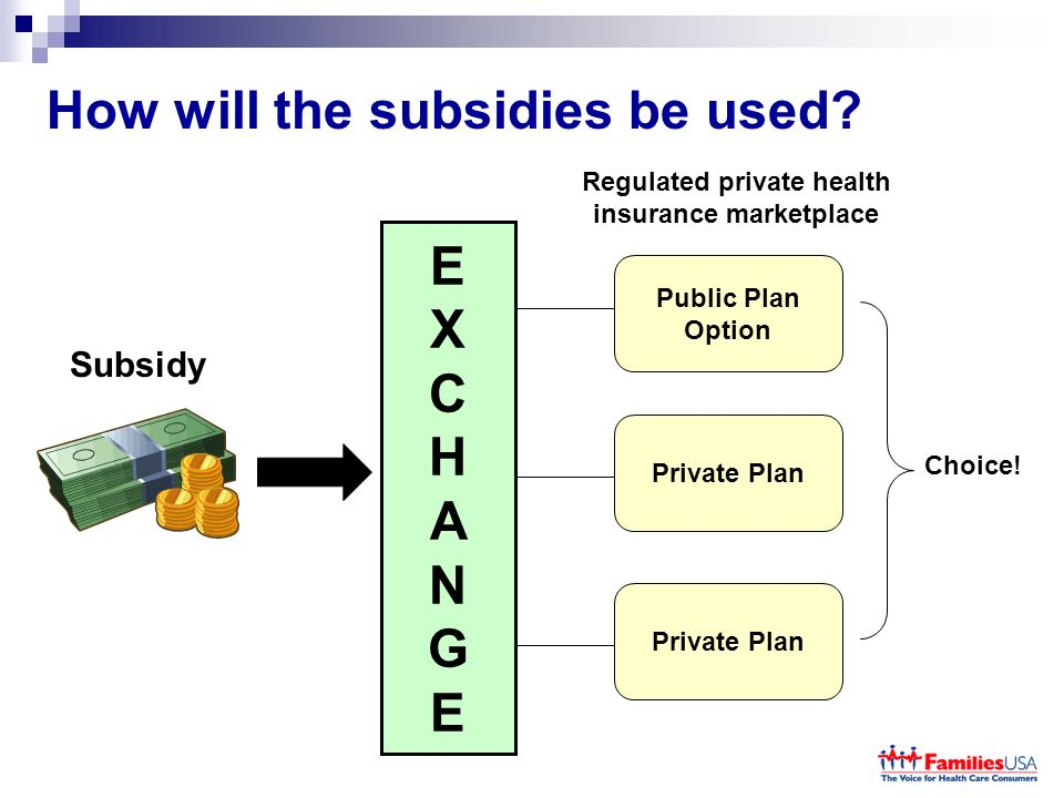 How will the subsidies be used.
