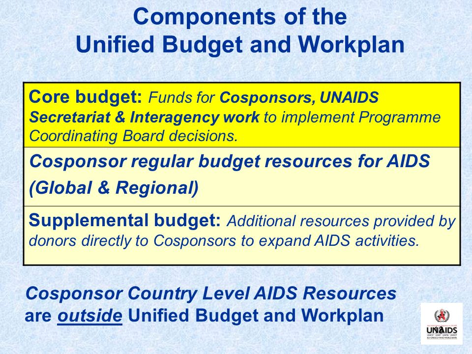 18 Components of the Unified Budget and Workplan Cosponsor Country Level AIDS Resources are outside Unified Budget and Workplan Core budget: Funds for Cosponsors, UNAIDS Secretariat & Interagency work to implement Programme Coordinating Board decisions.