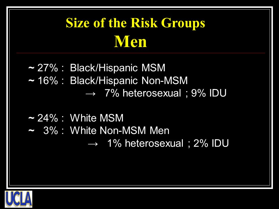 ~ 27% : Black/Hispanic MSM ~ 16% : Black/Hispanic Non-MSM 7% heterosexual ; 9% IDU ~ 24% : White MSM ~ 3% : White Non-MSM Men 1% heterosexual ; 2% IDU Size of the Risk Groups Men