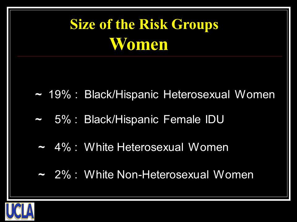 ~ 19% : Black/Hispanic Heterosexual Women ~ 5% : Black/Hispanic Female IDU ~ 4% : White Heterosexual Women ~ 2% : White Non-Heterosexual Women Size of the Risk Groups Women