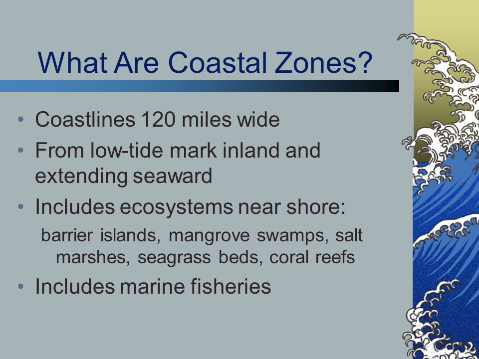 Importance of Coastal Zones Provide region with food and materials for new medicines Protect coastal settlements from storm damage Generate income from tourism Fragile and vulnerable biodiversity
