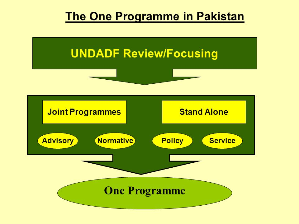 One Programme Joint ProgrammesStand Alone ServicePolicyNormativeAdvisory The One Programme in Pakistan UNDADF Review/Focusing