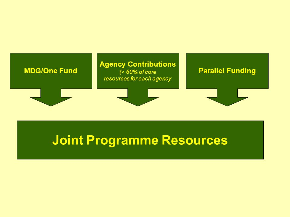 MDG/One FundParallel Funding Agency Contributions (> 60% of core resources for each agency Joint Programme Resources