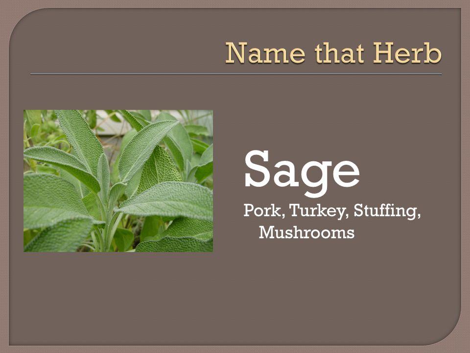 Sage Pork, Turkey, Stuffing, Mushrooms
