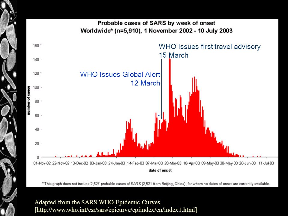 WHO Issues Global Alert 12 March WHO Issues first travel advisory 15 March Adapted from the SARS WHO Epidemic Curves [http://www.who.int/csr/sars/epicurve/epiindex/en/index1.html]