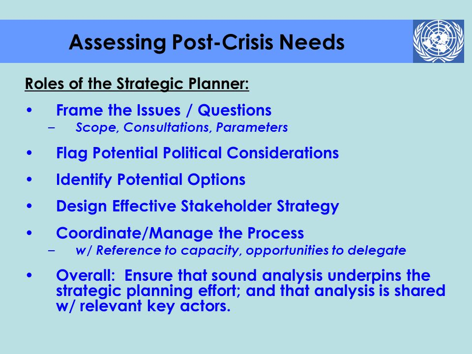 Roles of the Strategic Planner: Frame the Issues / Questions – Scope, Consultations, Parameters Flag Potential Political Considerations Identify Poten