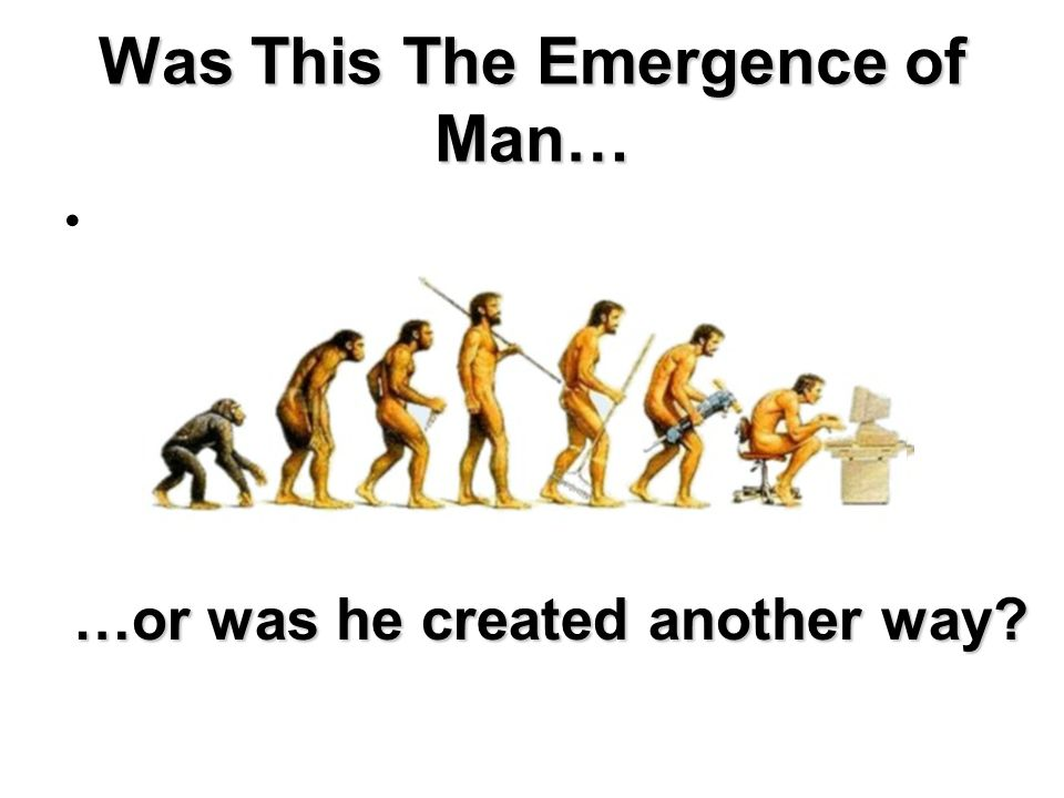 Was This The Emergence of Man… …or was he created another way?