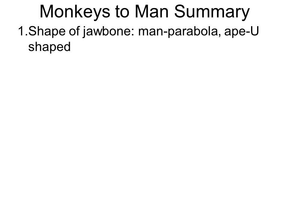 Monkeys to Man Summary 1.Shape of jawbone: man-parabola, ape-U shaped