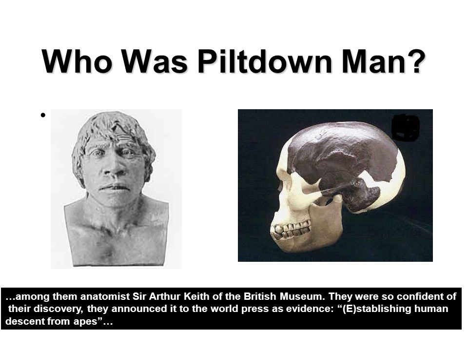 Who Was Piltdown Man? …among them anatomist Sir Arthur Keith of the British Museum. They were so confident of their discovery, they announced it to th
