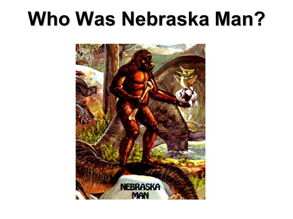 Who Was Nebraska Man?
