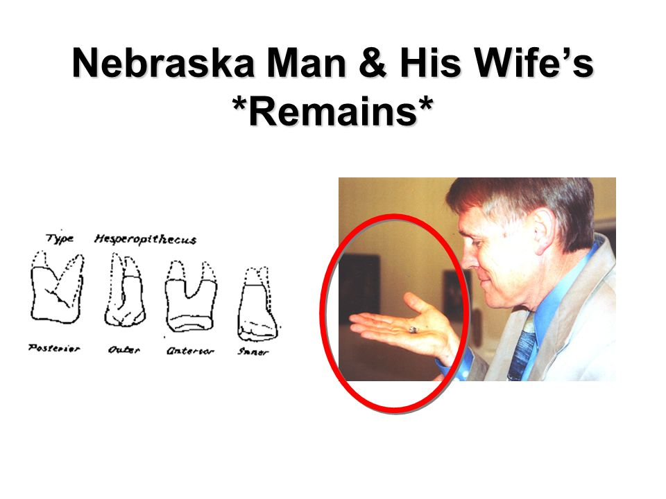 Nebraska Man & His Wifes *Remains*