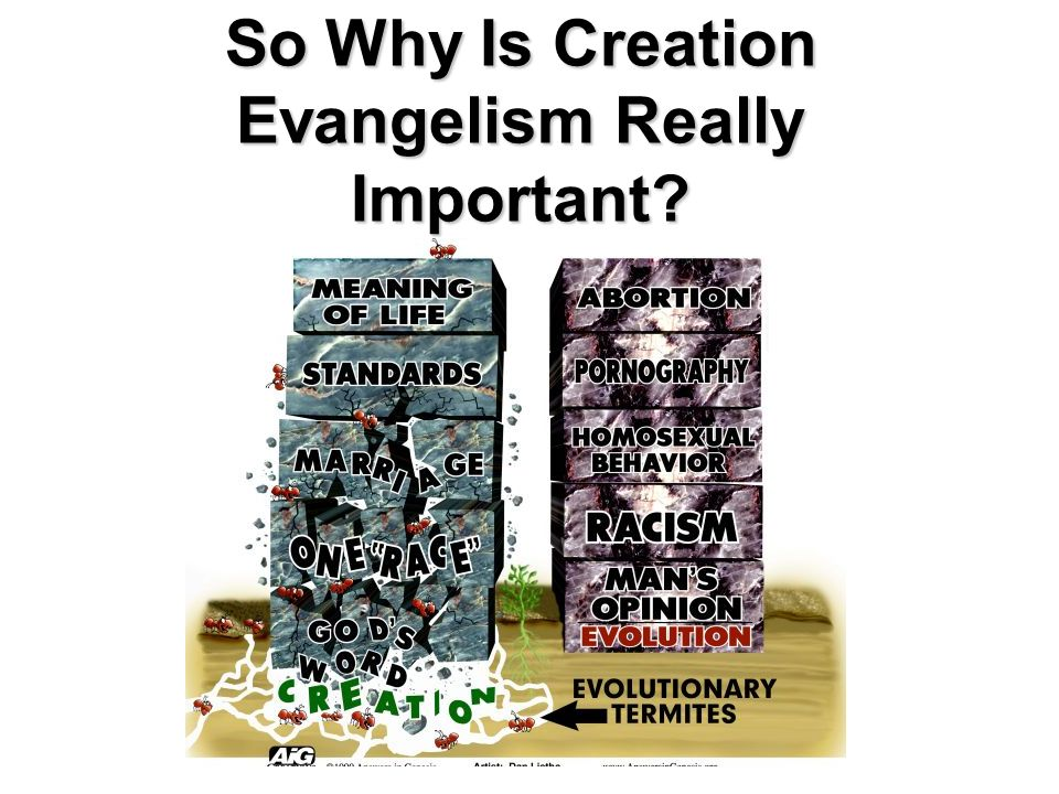 So Why Is Creation Evangelism Really Important?