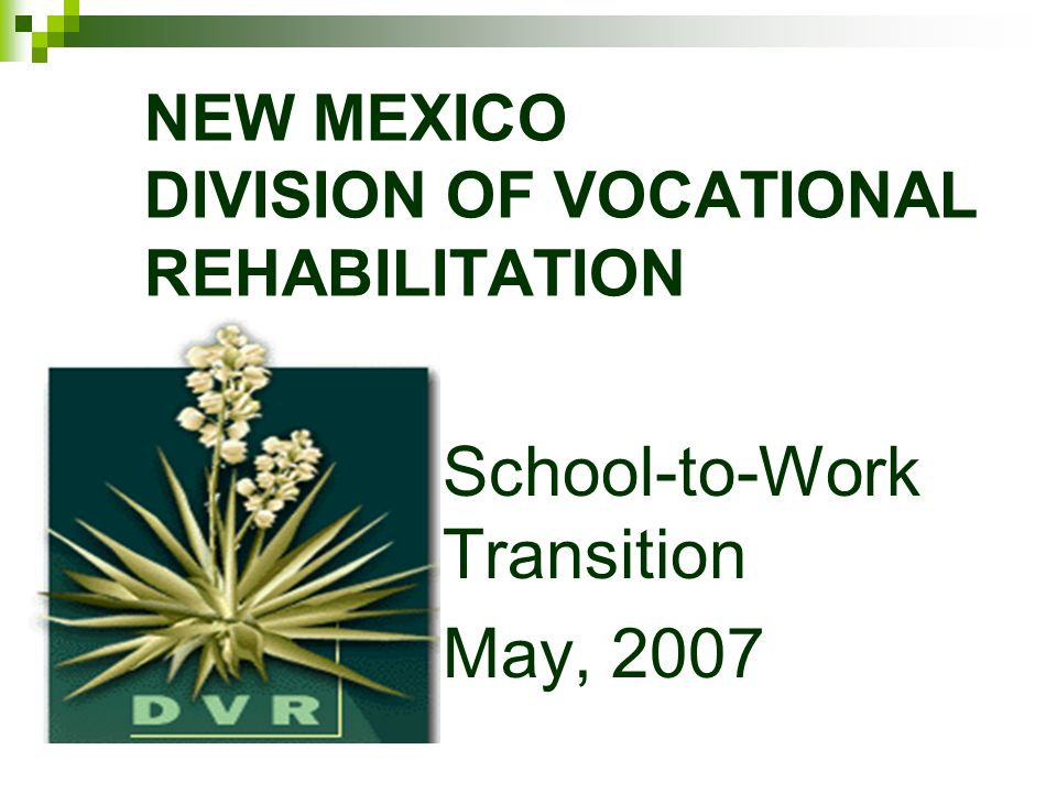 NEW MEXICO DIVISION OF VOCATIONAL REHABILITATION School-to-Work Transition May, 2007