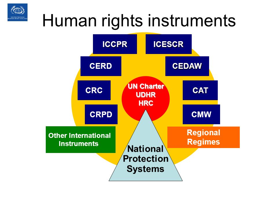 UN Charter UDHRHRC ICCPRICESCR CERDCEDAW CATCRC National Protection Systems CMW Other International Instruments Regional Regimes CRPD Human rights instruments