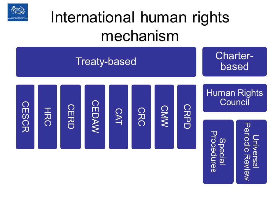 International human rights mechanism Treaty-based CESCR HRC CERD CEDAW CAT CRC CMW CRPD Charter- based Human Rights Council Special Procedures Univers
