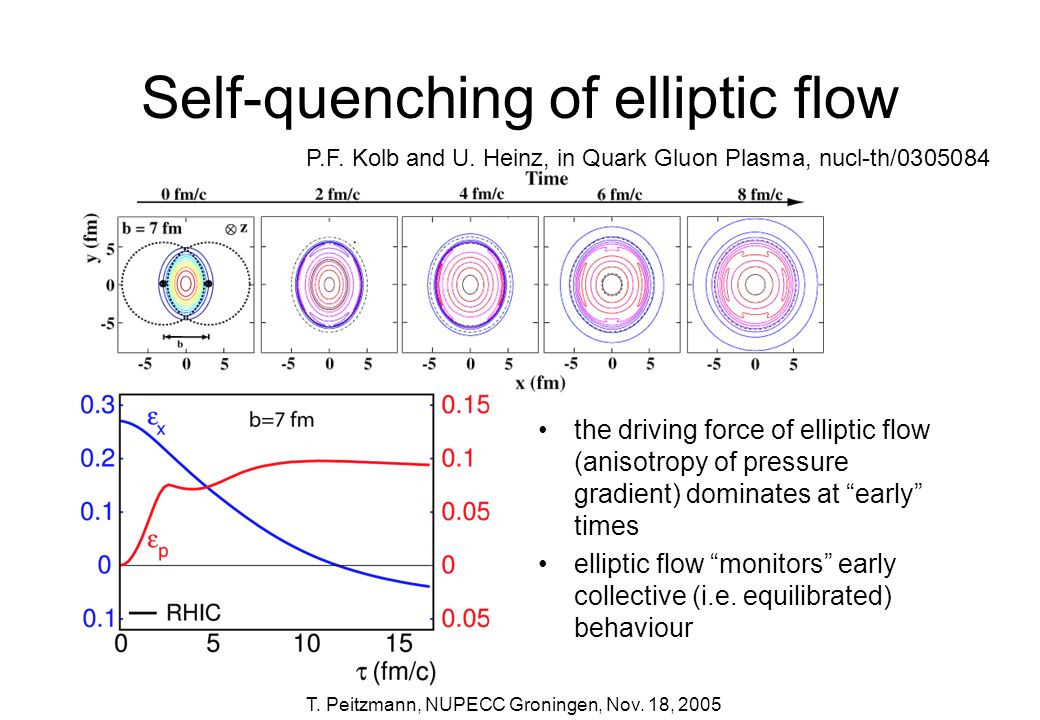 T. Peitzmann, NUPECC Groningen, Nov. 18, 2005 Self-quenching of elliptic flow the driving force of elliptic flow (anisotropy of pressure gradient) dom