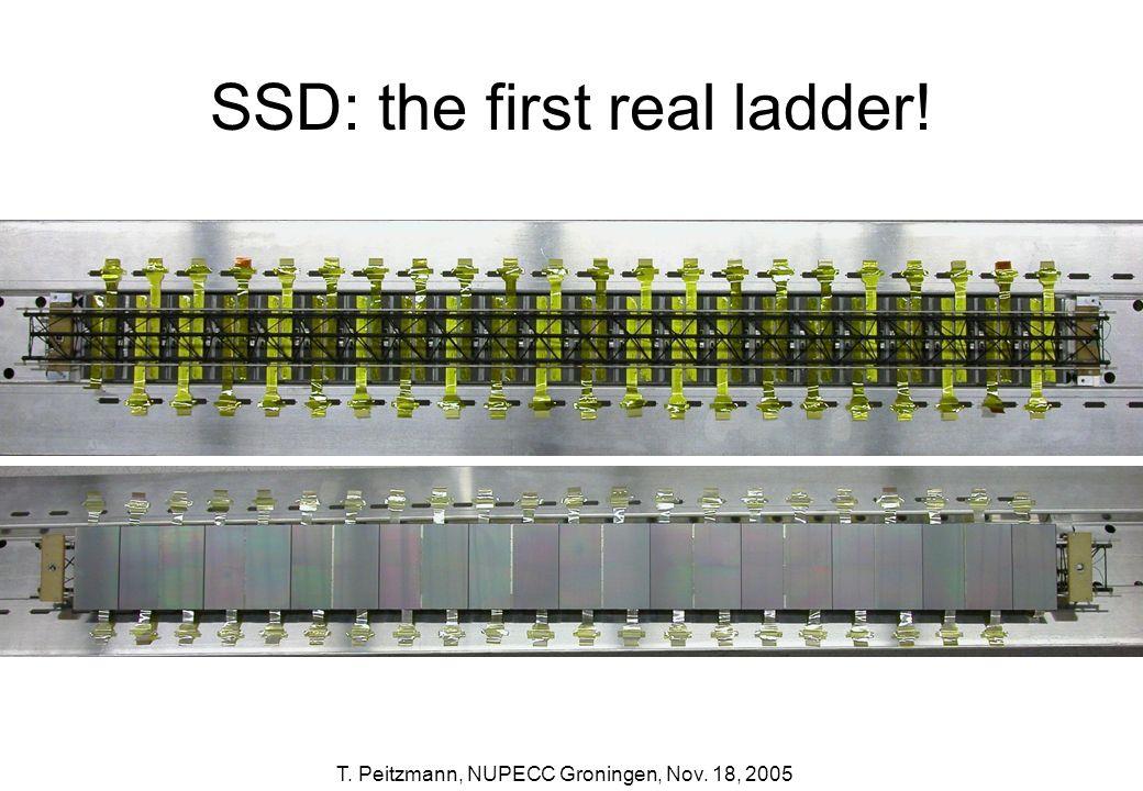 T. Peitzmann, NUPECC Groningen, Nov. 18, 2005 SSD: the first real ladder!