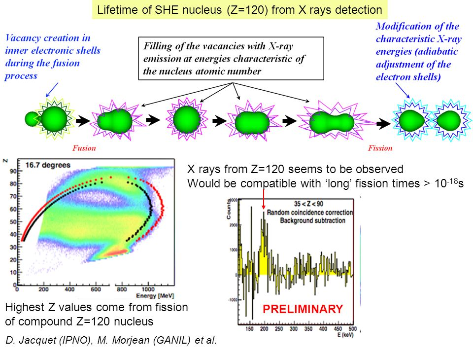 Lifetime of SHE nucleus (Z=120) from X rays detection D.