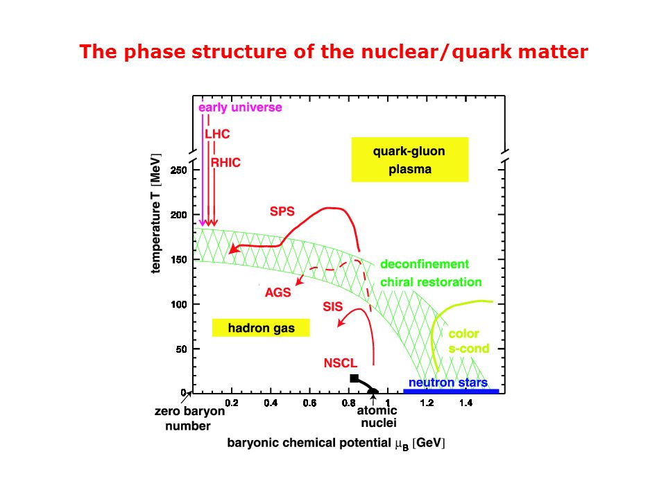 The phase structure of the nuclear/quark matter