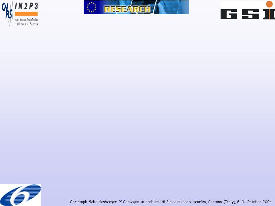 Christoph Scheidenberger, X Convegno su problemi di fisica nucleare teorica, Cortona (Italy), 6.-9. October 2004