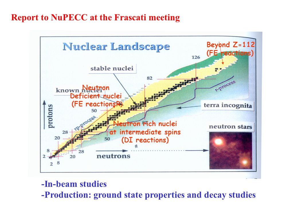 Beyond Z=112 (FE reactions) Neutron rich nuclei at intermediate spins (DI reactions) Neutron Deficient nuclei (FE reactionsR ) -In-beam studies -Production: ground state properties and decay studies Report to NuPECC at the Frascati meeting
