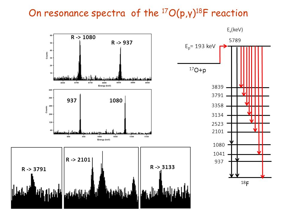 NuPECC - Milan On resonance spectra of the 17 O(p,γ) 18 F reaction 18 F 17 O+p E p = 193 keV E x (keV) R -> 3791 R -> 2101 R -> 3133 R -> 1080 R ->