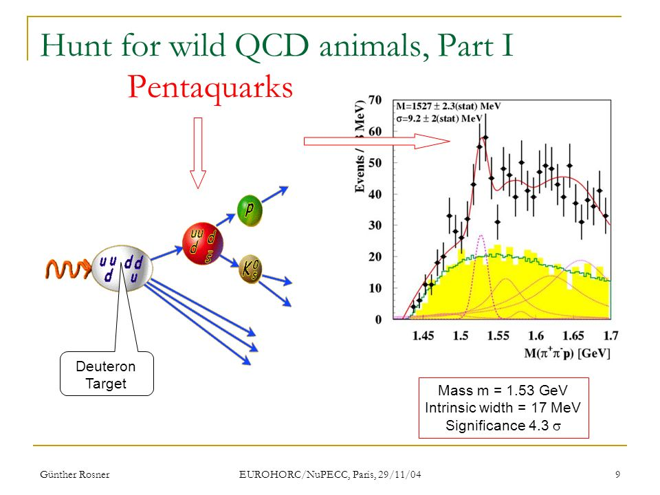 Günther Rosner EUROHORC/NuPECC, Paris, 29/11/04 9 Hunt for wild QCD animals, Part I Pentaquarks Mass m = 1.53 GeV Intrinsic width = 17 MeV Significance 4.3 Deuteron Target