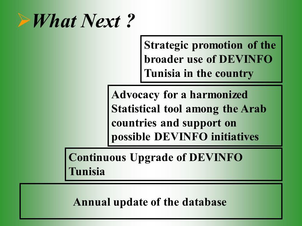 What Next ? Annual update of the database Continuous Upgrade of DEVINFO Tunisia Advocacy for a harmonized Statistical tool among the Arab countries an