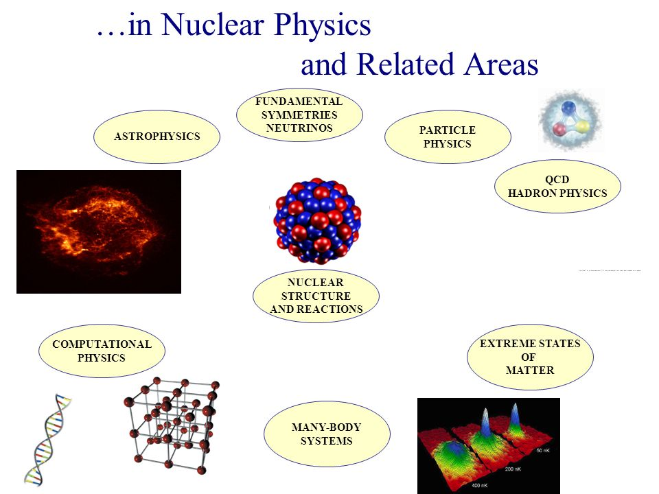 NUCLEAR STRUCTURE AND REACTIONS QCD HADRON PHYSICS EXTREME STATES OF MATTER PARTICLE PHYSICS ASTROPHYSICS MANY-BODY SYSTEMS …in Nuclear Physics and Related Areas FUNDAMENTAL SYMMETRIES NEUTRINOS COMPUTATIONAL PHYSICS