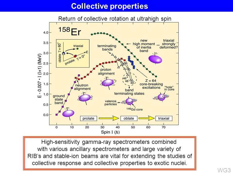 High-sensitivity gamma-ray spectrometers combined with various ancillary spectrometers and large variety of RIBs and stable-ion beams are vital for ex