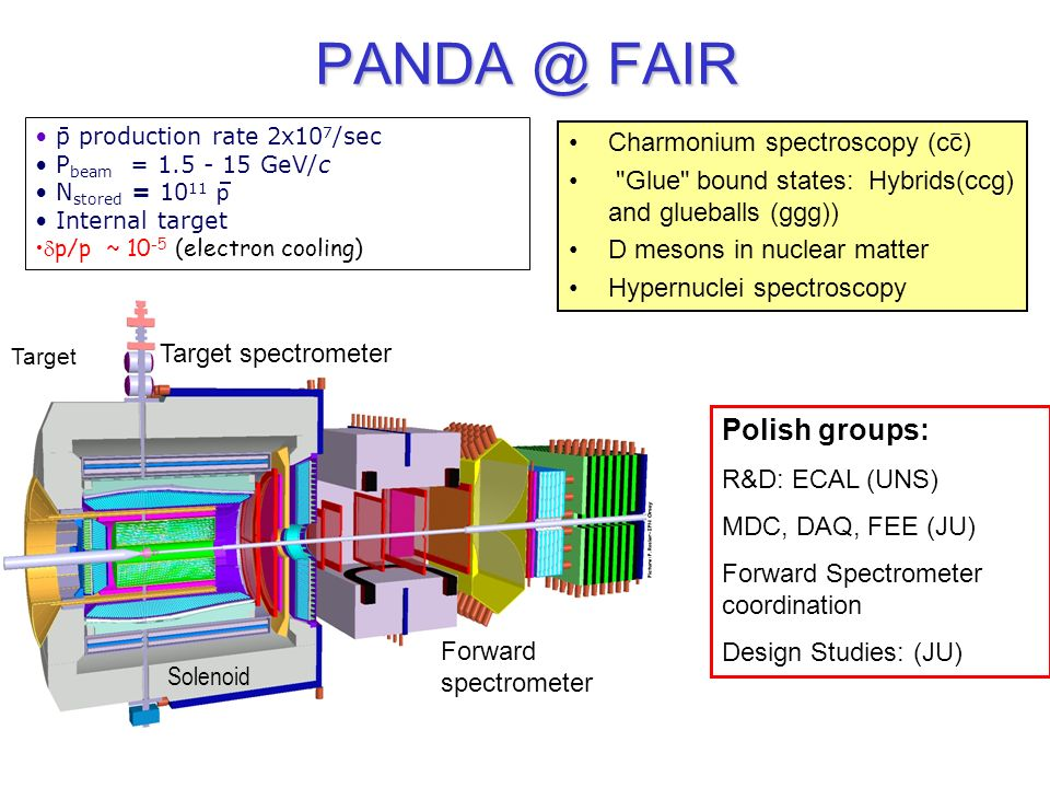 PANDA @ FAIR p production rate 2x10 7 /sec P beam = 1.5 - 15 GeV/c N stored = 10 11 p Internal target p/p ~ 10 -5 (electron cooling) Charmonium spectr