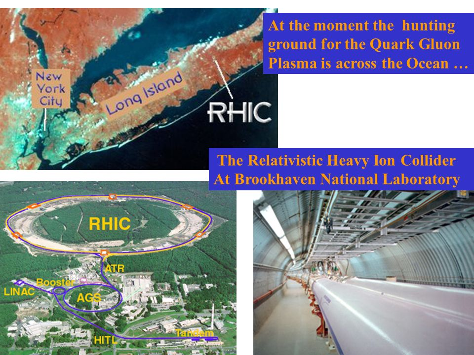The Relativistic Heavy Ion Collider At Brookhaven National Laboratory At the moment the hunting ground for the Quark Gluon Plasma is across the Ocean …