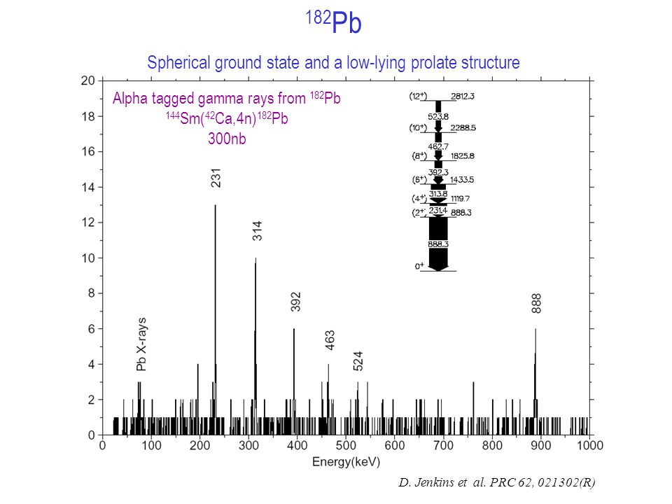 Alpha tagged gamma rays from 182 Pb 144 Sm( 42 Ca,4n) 182 Pb 300nb 182 Pb Spherical ground state and a low-lying prolate structure D.