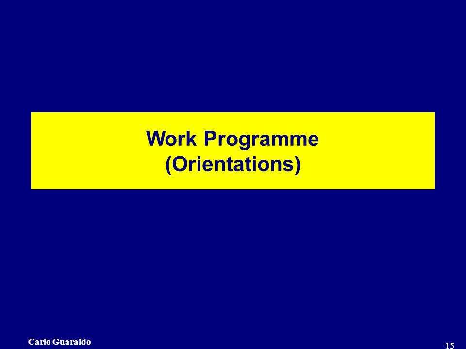 Carlo Guaraldo 15 Work Programme (Orientations)