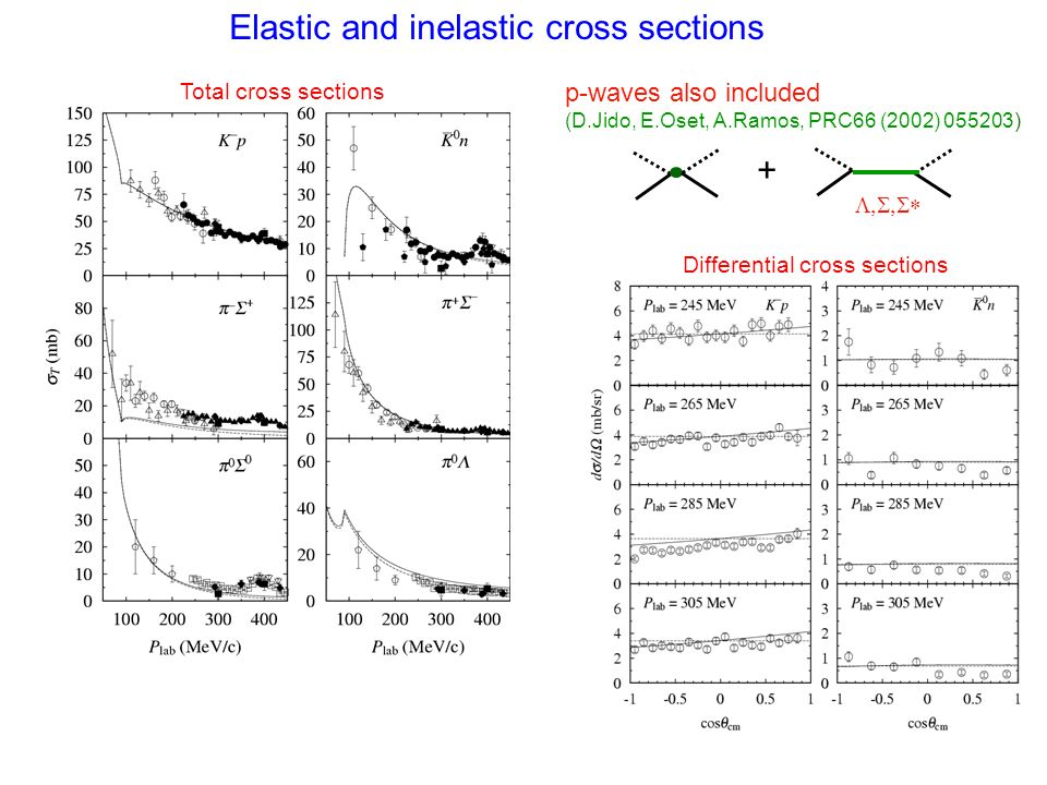 Elastic and inelastic cross sections p-waves also included (D.Jido, E.Oset, A.Ramos, PRC66 (2002) 055203) + Total cross sections Differential cross se