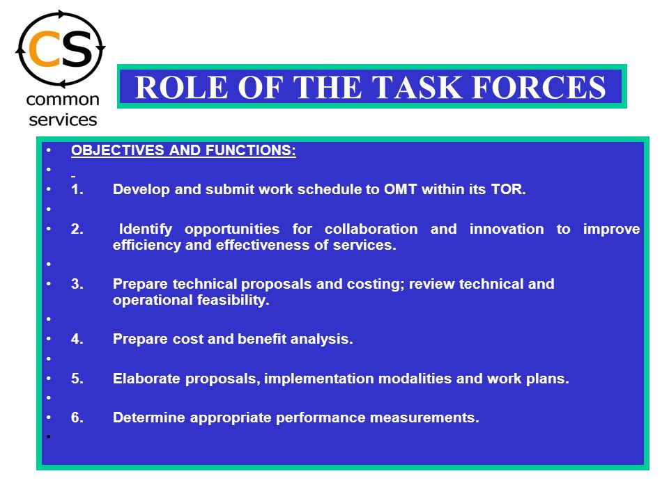 ROLE OF THE TASK FORCES OBJECTIVES AND FUNCTIONS: 1.