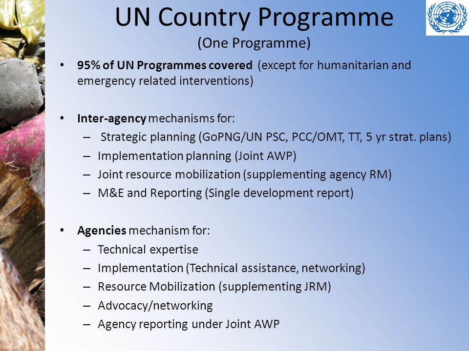 UN Country Programme (One Programme) 95% of UN Programmes covered (except for humanitarian and emergency related interventions) Inter-agency mechanisms for: – Strategic planning (GoPNG/UN PSC, PCC/OMT, TT, 5 yr strat.