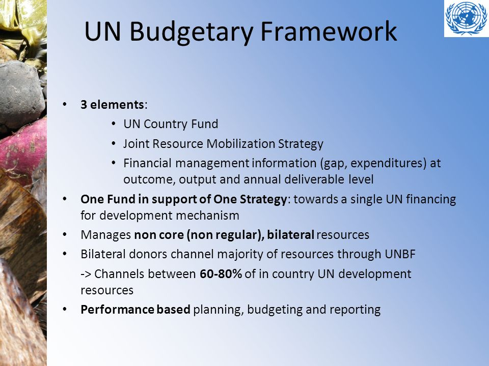 UN Budgetary Framework 3 elements: UN Country Fund Joint Resource Mobilization Strategy Financial management information (gap, expenditures) at outcom
