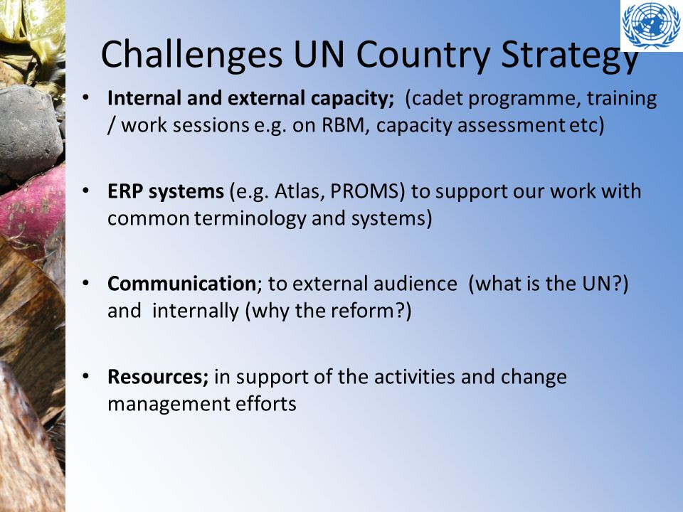 Challenges UN Country Strategy Internal and external capacity; (cadet programme, training / work sessions e.g. on RBM, capacity assessment etc) ERP sy