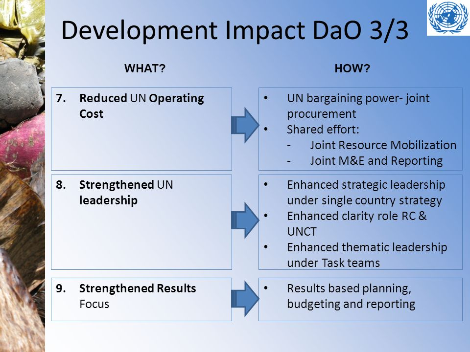 Development Impact DaO 3/3 7.Reduced UN Operating Cost 8.Strengthened UN leadership 9.Strengthened Results Focus UN bargaining power- joint procuremen