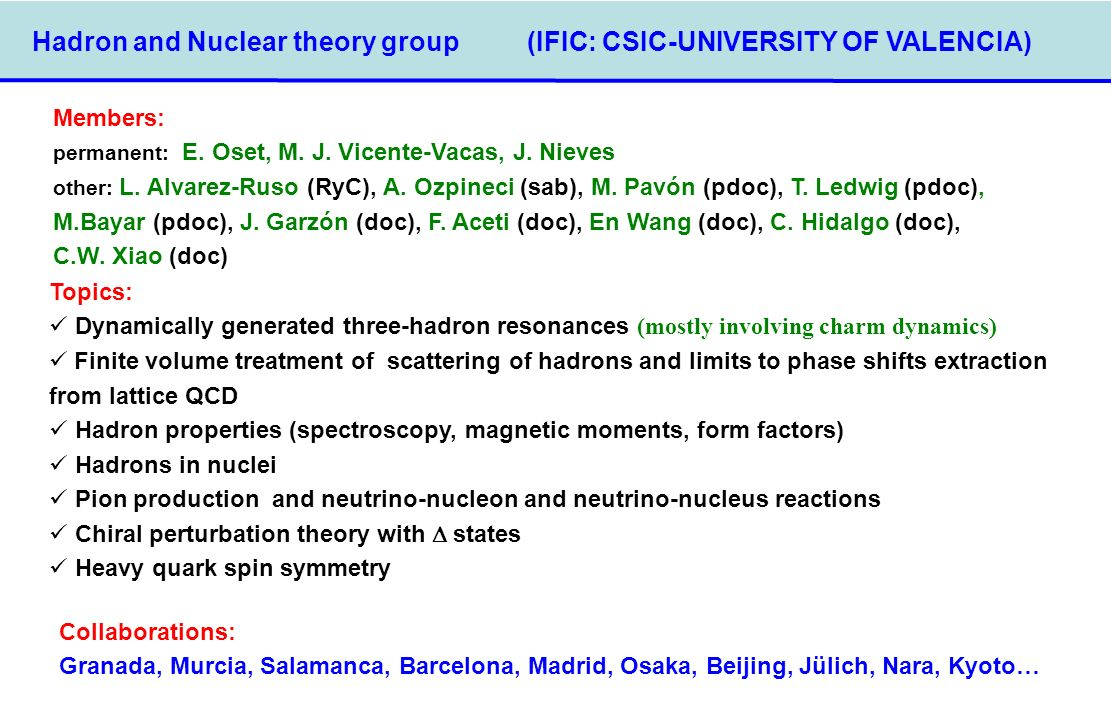 Hadron and Nuclear theory group (IFIC: CSIC-UNIVERSITY OF VALENCIA) Members: permanent: E. Oset, M. J. Vicente-Vacas, J. Nieves other: L. Alvarez-Ruso