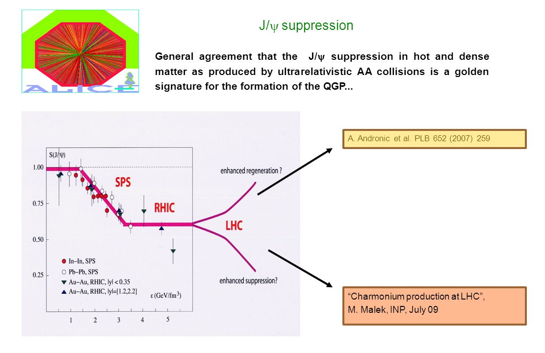 J/ suppression General agreement that the J/ suppression in hot and dense matter as produced by ultrarelativistic AA collisions is a golden signature