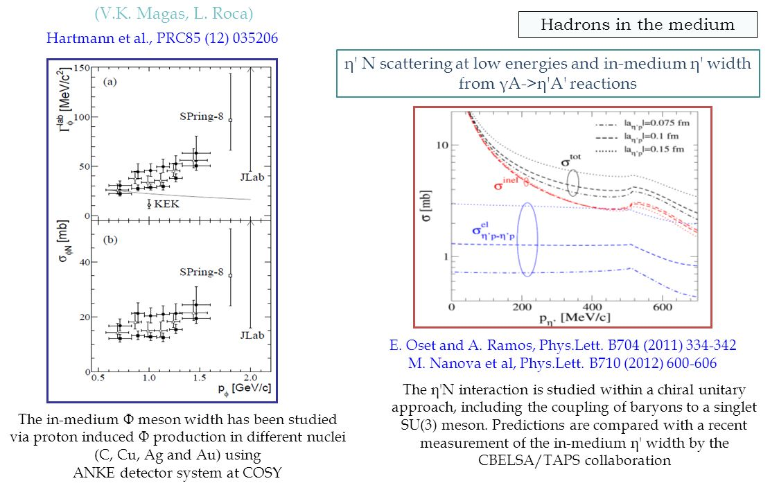The in-medium Φ meson width has been studied via proton induced Φ production in different nuclei (C, Cu, Ag and Au) using ANKE detector system at COSY