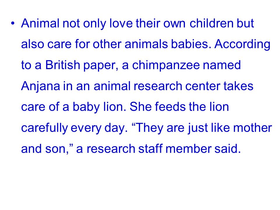Animal not only love their own children but also care for other animals babies.