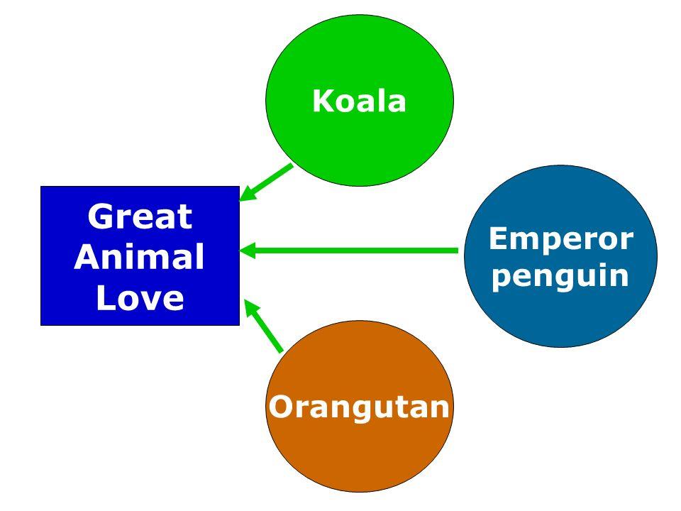Koala Emperor penguin Orangutan Great Animal Love